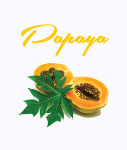 Papaya Shampoo